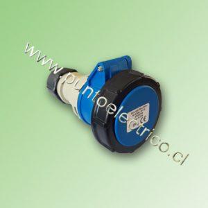 PE200501p